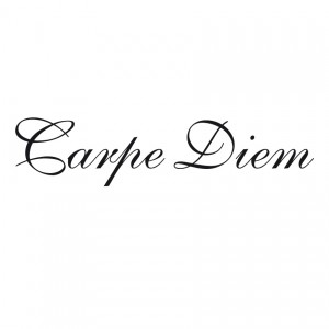 carpe_diem_shelly